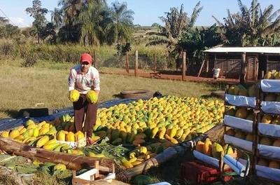 MAG constata éxito de buenas prácticas en fincas agrícolas de Amambay
