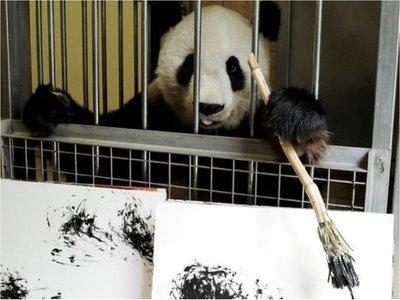 Yang Yang, la osa panda que crea obras de arte en el zoo de Viena