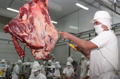 Exportación de carne aumenta en un 6,9%