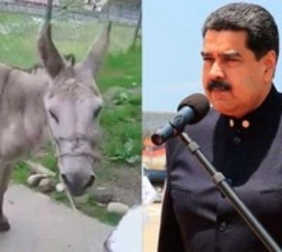 Se burlaron de Maduro y ahora se exponen a 20 años de prisión