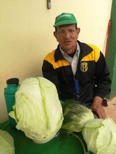 Agricultor onohê un repollo de ¡seis kilos!