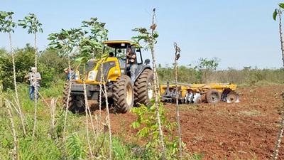 Alto Paraná también serán beneficiado con aporte para la agricultura familiar