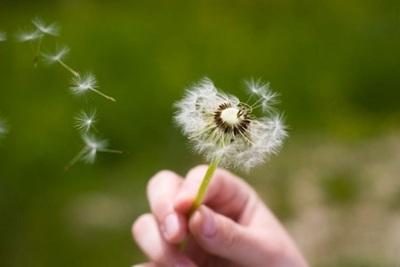 Con la primavera también las alergias se acentúan