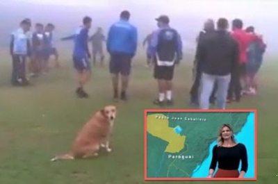 "O Globo fue a reportear a la guágui ""Tesapara"""