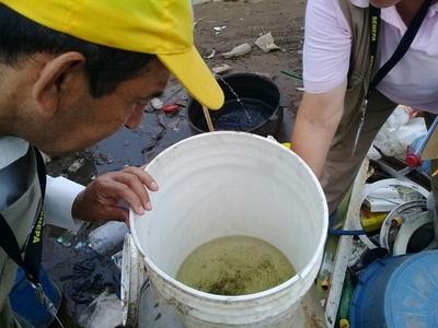 Diez semanas sin Dengue en el país