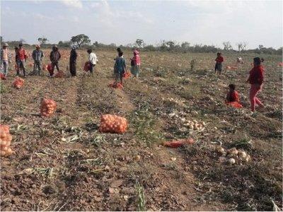 Denuncian explotación laboral de niños nativos en remota estancia
