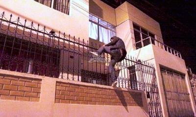 Pretenden evitar la imputación de quien mate a un ladrón dentro de su domicilio · Radio Monumental 1080 AM
