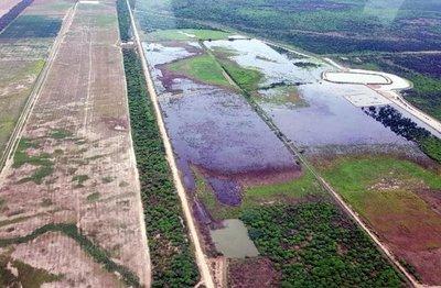 Investigan toma de agua del Pilcomayo para cultivos