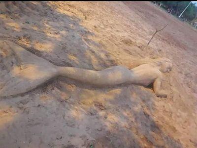 Sirena apareció en playa de San Cosme