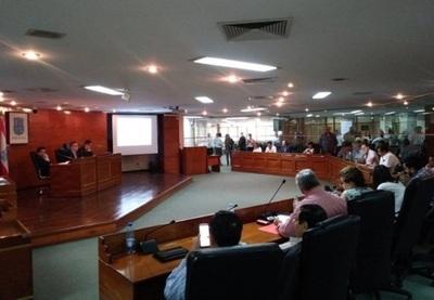 Junta Asuncena aprueba construcción de viaductos en el Botánico