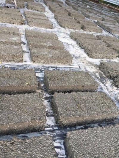 Desarrollaron ladrillos económicos a partir de plástico y cemento