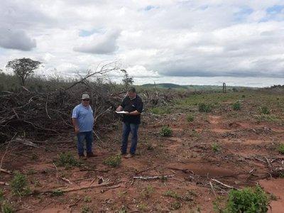 Constatan desmonte de 12 hectáreas en Itanará