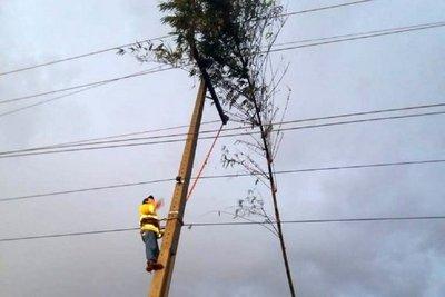 Más de 10 ciudades sin energía eléctrica tras fuerte tormenta