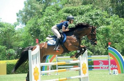Vidas dedicadas al caballo