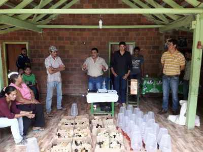 Entregan plantines y aves de corral a productores del Sur