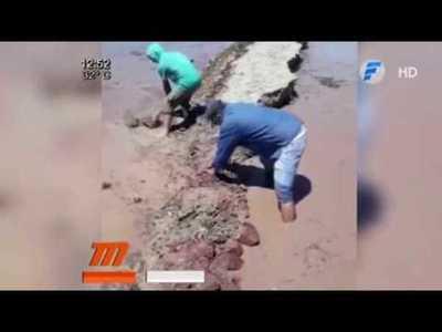 Despejan ruta afectada por la crecida del río en Alberdi