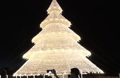 El árbol de Navidad más grande del país está en Bella Vista – Prensa 5