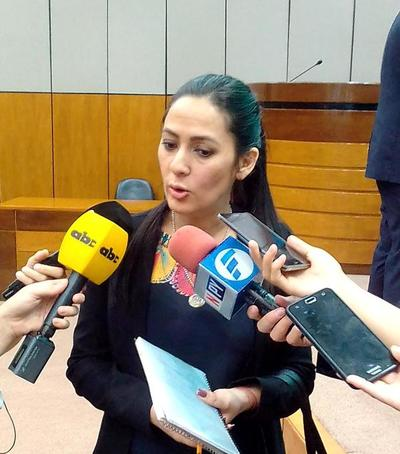 Karina Gómez presentó informe ante la comisión bicameral del caso Messer