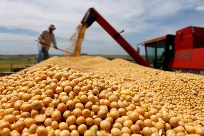 Vaticinan que sector agropecuario dejará de ser el motor de la economía
