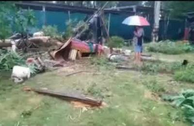 Temporal Fatal: árbol cayó sorbe una vivienda