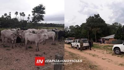POLICÍA REÚNE CONTUNDENTES EVIDENCIAS Y CORTA CON SUPUESTA BANDA DE ABIGEOS.