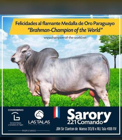 Un toro Brahman paraguayo fue elegido como el mejor del mundo