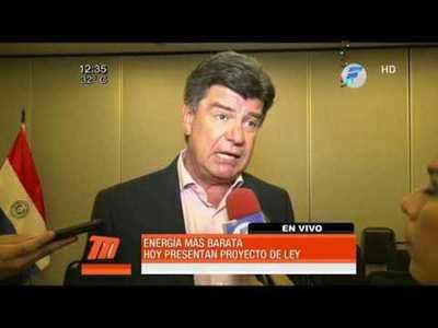 """PLRA busca impulsar proyecto de ley de """"Energía Barata"""""""