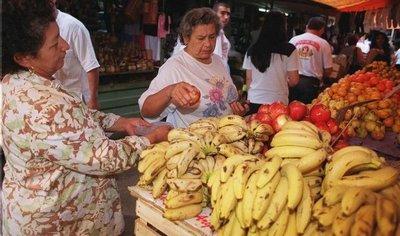 Congreso sanciona proyecto para incluir la banana en la merienda escolar