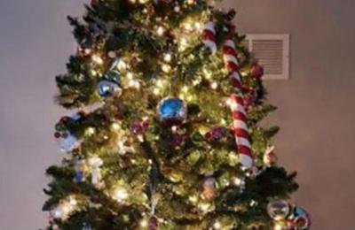 ¿Puedes encontrar al gato escondido en este árbol de Navidad?