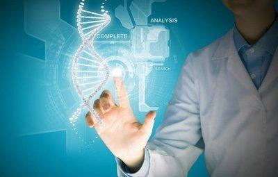 Los genes influyen en los niveles de actividad física