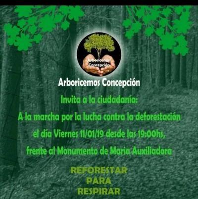 Realizarán marcha contra la deforestación en Concepción