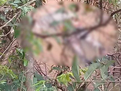 Decapitado salió a flote en río Aparay: le volaron la cabeza con potente arma