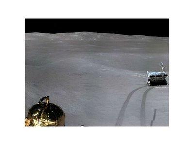 Chinos logran cultivar algodón en la luna