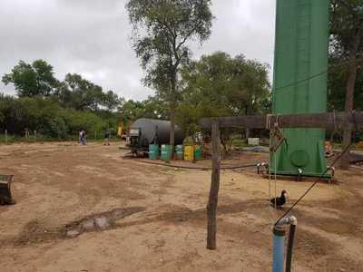 Constatan otras 2000 hectáreas deforestadas en el Chaco