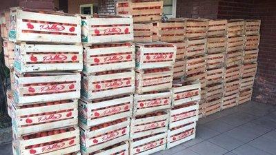 Incautan casi 5.000 kilos de hortalizas en la frontera