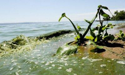 Urge construcción de alcantarillado sanitario en cuenca del lago Ypacaraí