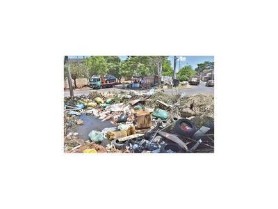 Nauseabundo basural en zona residencial es enorme criadero