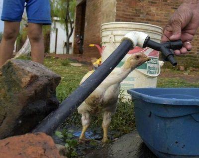 """Essap: falta de agua es por """"crecimiento desordenado"""""""