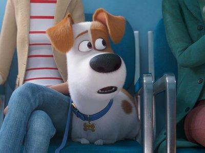 La vida secreta de tus mascotas y su cuarto tráiler