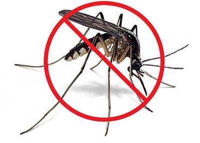 Nuevos casos de Dengue y Chikungunya