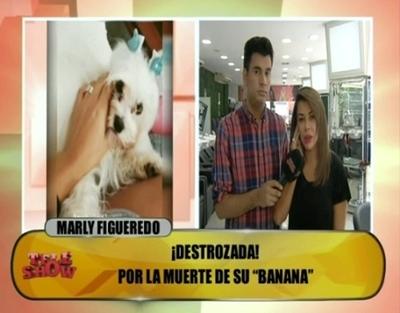 """Marly advierte a veterinarios que atendieron a su perrita: """"Voy a evitar más muertes"""""""