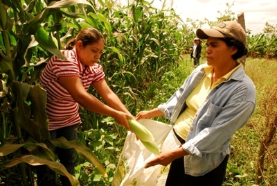 Presentarán proyecto para empoderar a mujeres rurales