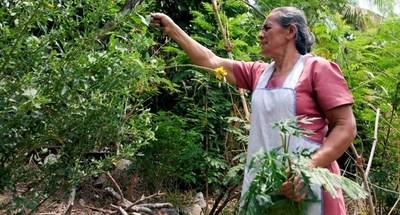 """Presentan proyecto """"Mujeres Emprendedoras de la Agricultura Familiar"""""""