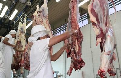 Exportación de carne al mercado chileno registra un leve aumento