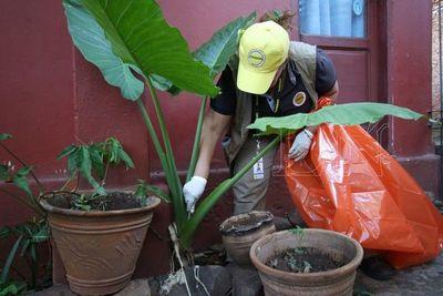 Registran 94 casos confirmandos de dengue