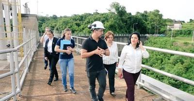 La Ruta de la Stevia será el nuevo producto turístico de Alto Paraná