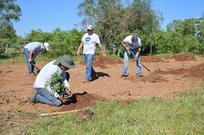 Celebran el Día del Tereré cultivando árboles nativos en Atyrá