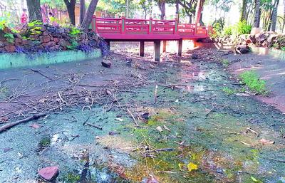 Parque Chino de CDE se encuentra sucio y en deplorables condiciones