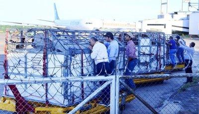 Luego de 16 años ingresaron nuevamente en pie animales de EEUU a Paraguay la importación fue de 20 ejemplares de la raza Brahman, la mitad rojos y la otra mitad grises