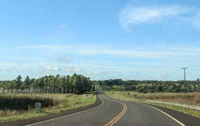 Iniciará pavimentación del tramo Ruta 10 – Araujo Cué
